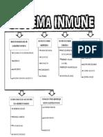 Sistema Inmune (Cuadro)