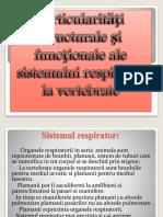 Particularităţi Structurale Şi Funcţionale Ale Sistemului Respirator
