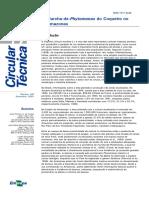 Phytomonas em coqueiro.pdf
