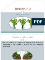 Hidroponia General 000