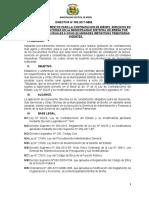 modelo de directiva