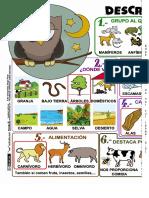 Describir Animales 2x1