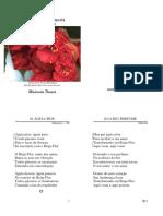 Madrinha Nonata - Presenca - Folha Usada.pdf