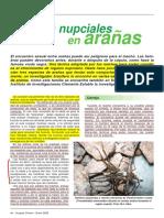 Albo, María José - Regalos nupciales en arañas.pdf