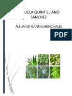 Album Plantas Medicinales