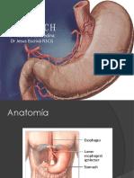 20111020 Estomago Gastritis y Hp (1)
