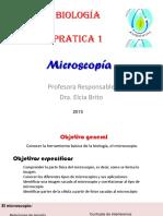 01_Microscopia