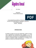 Yonatan Arevalo Garcia_ Grupo165_Presentación Pre-Tareaa