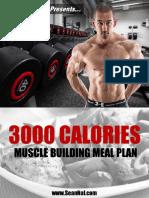 Bulking Meal Plan 3000cals
