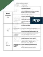 Competencias y Capacidades Del Cn 2017