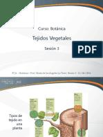 Sesión 03 - Tejidos Vegetales.pdf