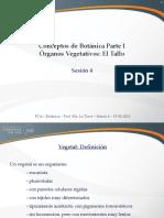 Sesión 04 - Órganos Vegetativos - El Tallo.pdf