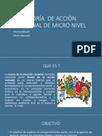 Teoría Racional de Micro Nivel