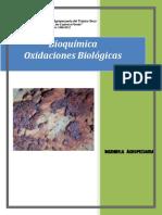 folleto-2-bioquimica-oxidaciones-biologicas.pdf