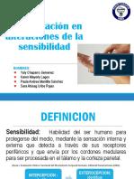 Rehabilitación en Alteraciones de La Sensibilidad (2) (1)