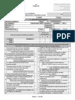 Formato Ficha de Seguimiento (Versión Imprimible)