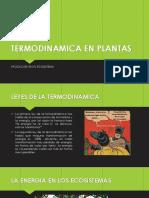 Termodinamica en Plantas (1)