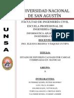 Cargas Combinadas - Informe Final