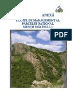 2013-04-29-DB-PLAN -MANAGEMENT-MACIN.doc