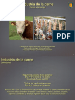 Carnes Industria de Alimentos Ppt (1)