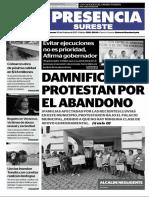 PDF Presencia 20102017
