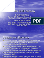 Disaster and Economy
