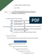 Tema 1. EL CUERPO HUMANO. LA FUNCIÓN DE RELACIÓN..pdf