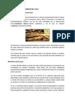 Fabricacion de Almidón de Yuca