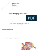 07 Fisiopatología Glomerulares 2017