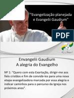evangelizaoplanejadaeevangeliigaudium-140901175236-phpapp02