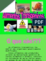 Alimentos Transgénicos - Apresentação