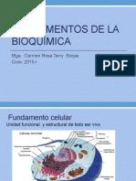 Fundamentos de La Bioquimica