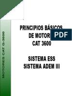 1. INTRODUCCION CAT 3600