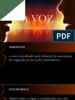 A voz como instrumento musical - seminário