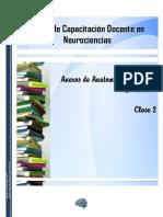 Anexos de Anatomía y Fisiología - El  Cerebro.pdf