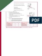 ABI Measuring ACP Chart.pdf