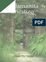 El Lamanita Mestizo - Arturo de Hoyos