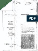 Sundel & Stone, Cap. 8 y 9.pdf