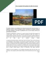 Impacto Ambiental Causado Por Quema de Caña de Azucar