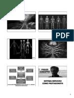 Tendon y Ligamento 15.Pptx