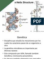 1Genetica bacteriana.ppt