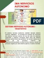 Sistema Nerviosos Autonomo 1