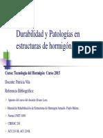 Durabilidad Patologías2015.pdf