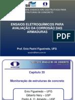 EnioPaziniFigueiredoEnsaiosEletroquimicos.pdf