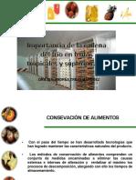 Refrigeracion-comercial-cadena-de-frio.pdf