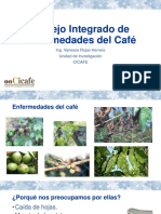 Prog-nac-cafe-Manejo Integrado de Enfermedades Del Cafe