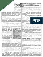 Geografia - Pré-Vestibular Impacto - Sistema Econômico Capitalista I