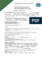 Guia Proceso Enfermeria Adulto 2017-2!18!10