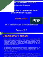 Biología Celular CITOPLASMA 2017