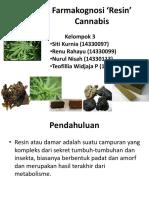 Farmakognosi Cannabis